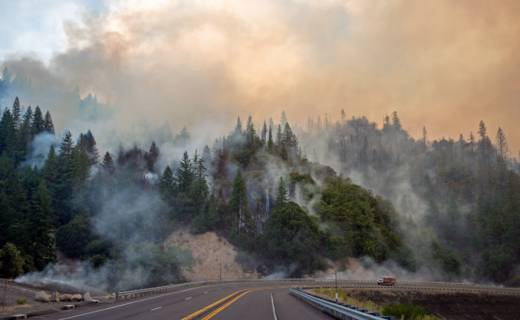 Impact Of Wildfires On Watersheds