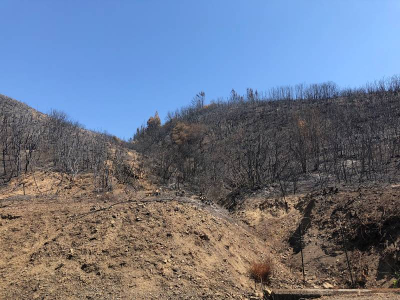 Burn scars in Lake County just a few miles from the fairgrounds.