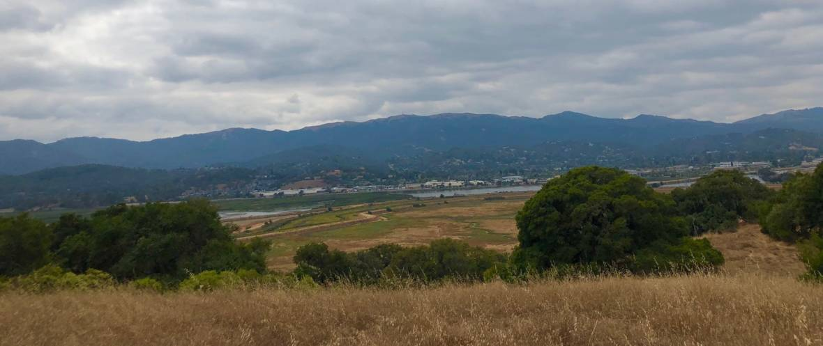 Tidal Wetlands Could Enclose Novato's Deer Island Once Again