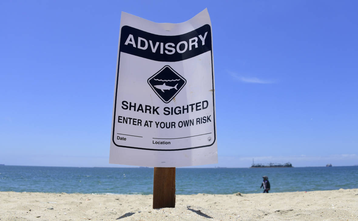 Teen Attacked by Shark at Southern California Beach