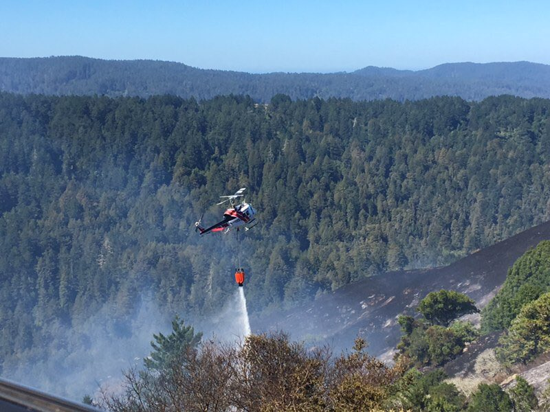 Fire Chief: Downed PG&E Power Line Caused Marin County's Irving Fire