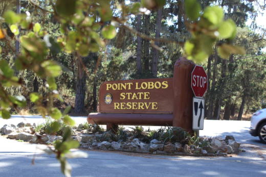 Point Lobos, 'Crown Jewel' of State Parks, to Require