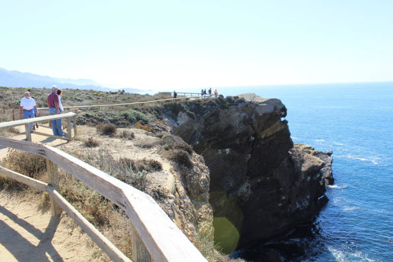More than 600,000 people visit Point Lobos State Natural Reserve each year.