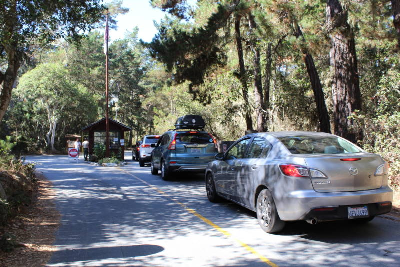 Cars line up to get into Point Lobos State Natural Reserve. Visitors compete for 150 parking spots forcing many to park dangerously along Highway 1.