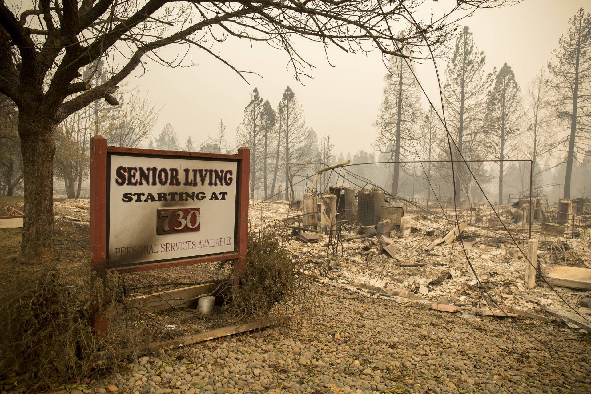 Paradise Gardens senior living facility was destroyed by the deadly Camp Fire in Butte County.   Anne Wernikoff/KQED