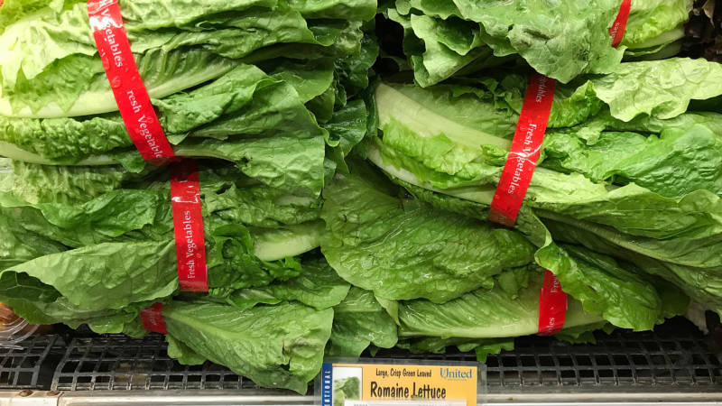 Ag Official: E. Coli Outbreak Could Hurt Salinas Valley Lettuce Growers for Years