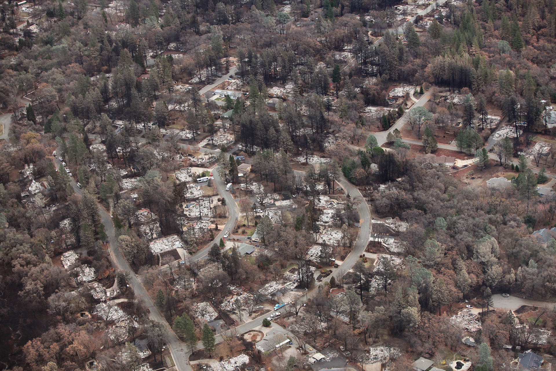 A residential neighborhood in Paradise seen approximately one month after the Camp Fire.  Adam Grossberg/KQED