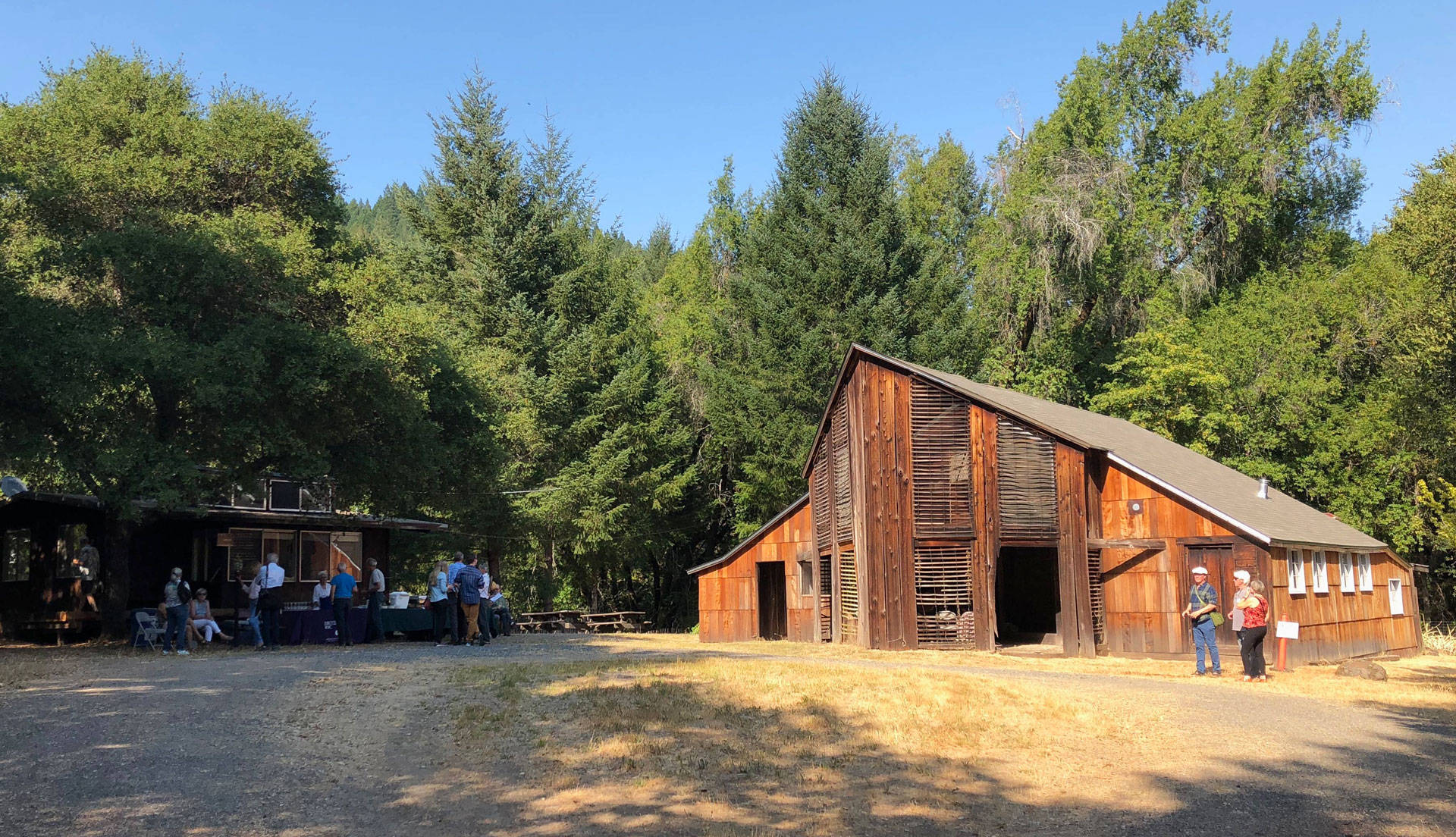 A view of the old barn at Pond Farm in the Sonoma Redwoods, where master potter Marguerite Wildenhain lived and worked for more than 40 years. Chloe Veltman/KQED