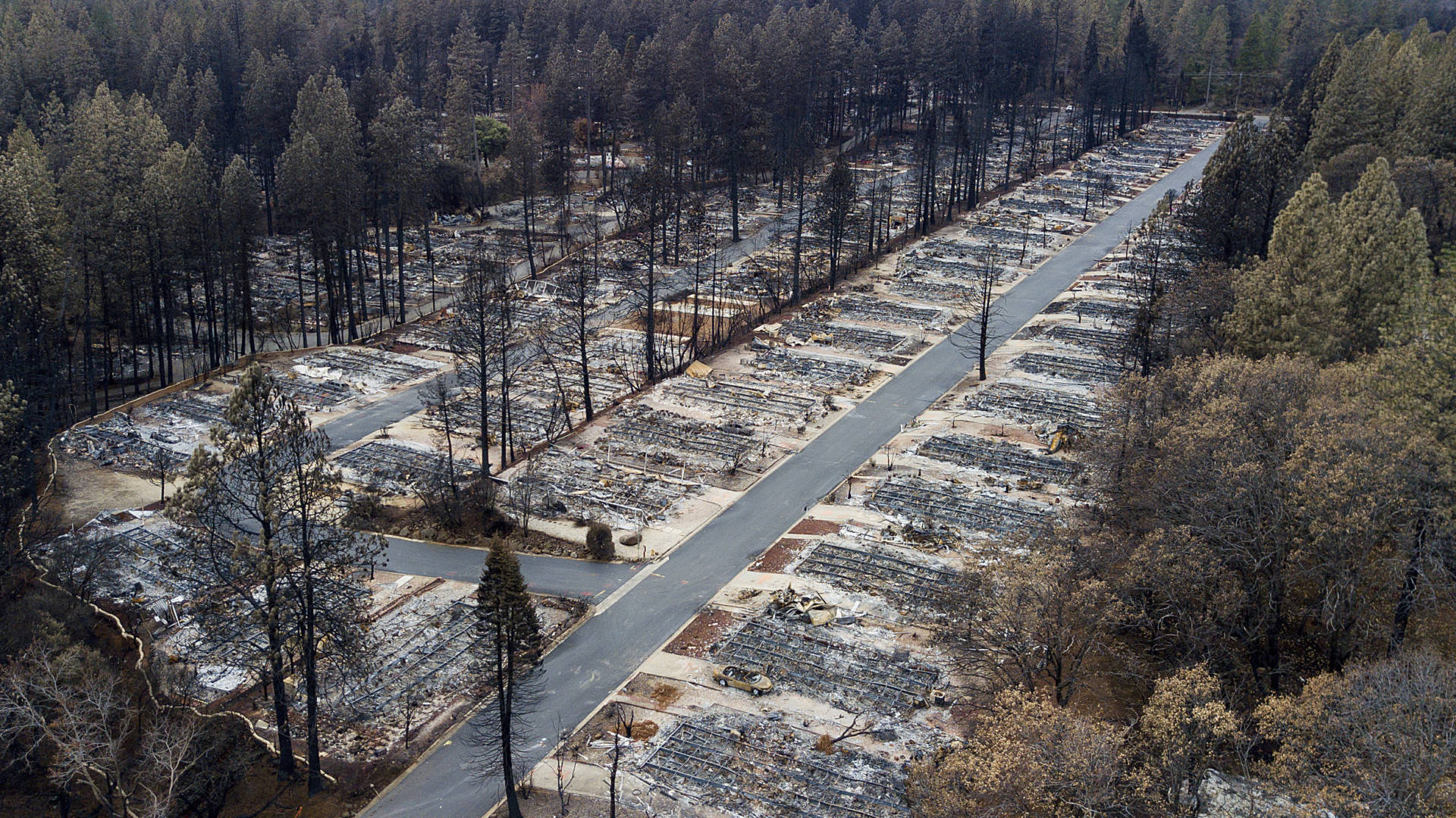 Homes leveled by the November Camp Fire line the Ridgewood Mobile Home Park retirement community in Paradise. Noah Berger/AP