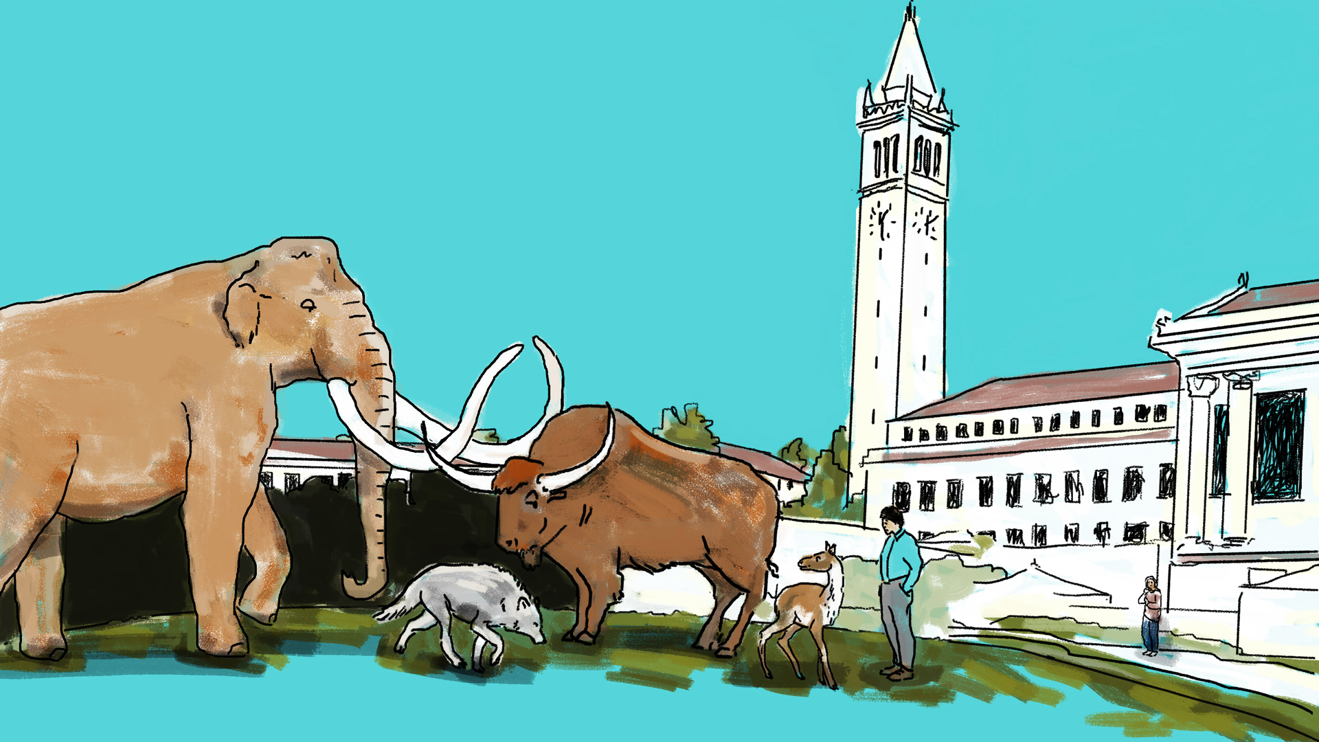 Are There Dinosaur Bones in UC Berkeley's Campanile?