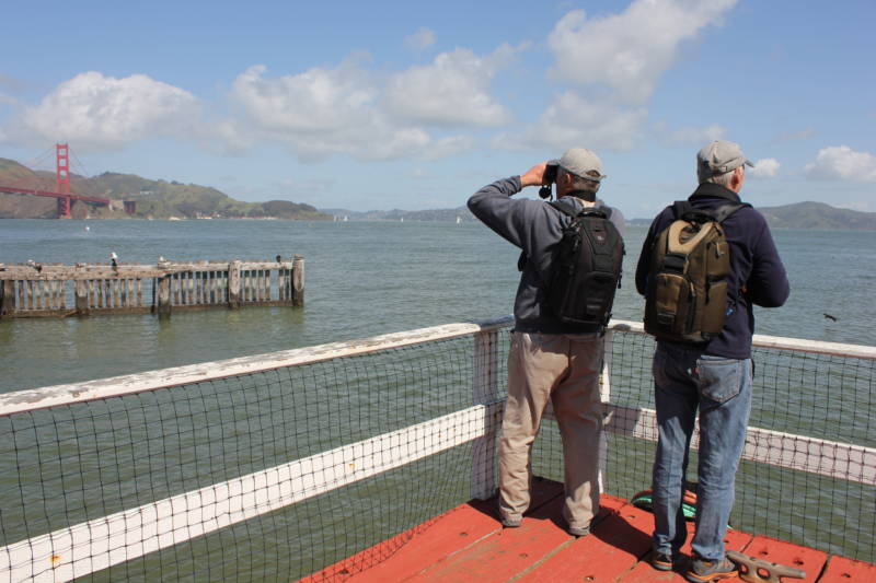 Marine biologists Izzy Szczepaniak (left) and Bill Keener (right) watch for whales in the Bay Area.
