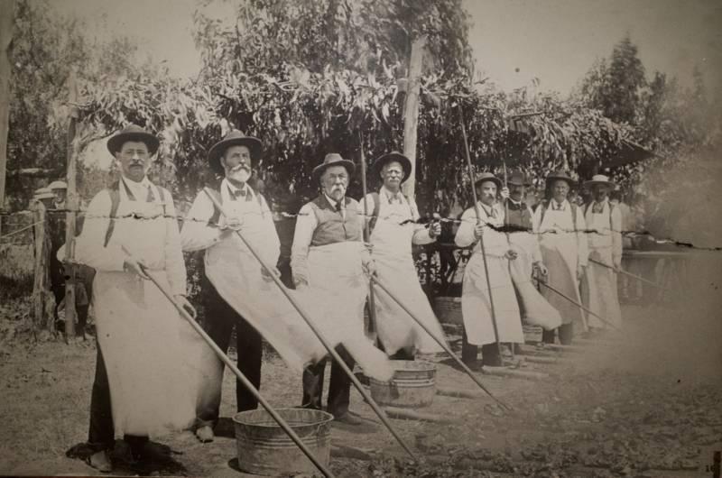 Volunteers barbecue at Santa Maria's Fourth of July celebration in 1904. Photo courtesy Santa Maria Historical Society