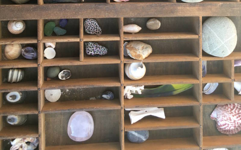 A collection of seashells was another Waters artifact up for sale. 'I'm trying to sell all the things I've gathered over 47 years. And offer them to people who might really like to own them and treasure them,' Waters said.