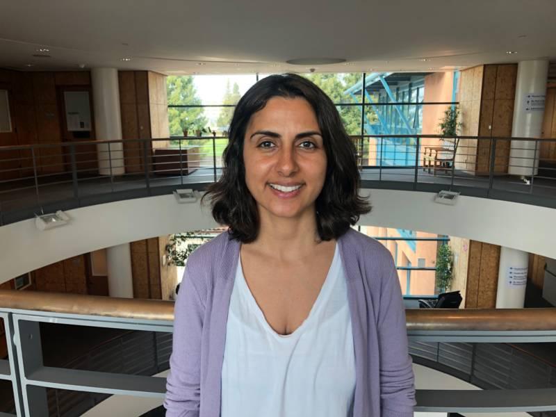 Bahar Navab, associate director of insurance and business development for UC Berkeley's University Health Services.