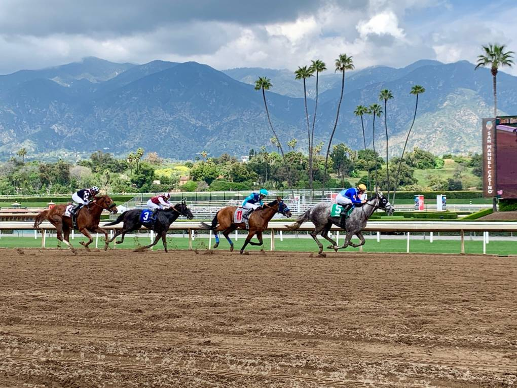 Racing Continues at Santa Anita Park Amid Mounting Pressure to Suspend Competition After Spate of Horse Deaths