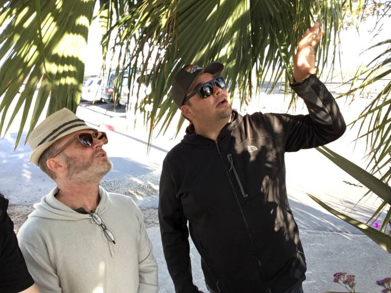 Joseph Morales and Jason Dewees admire the palms
