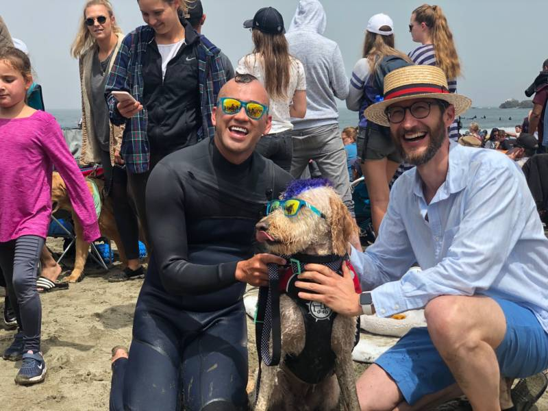 The World Dog Surfing championship has turned into quite an event for Pacifica, drawing nearly 4,000 spectators, vendors and even the mayor.