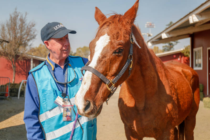 Dr. John Madigan founded and coordinates the UC Davis Veterinary Emergency Response Team. During evacuations due to the Kincade Fire, the team provided medical assistance to animals evacuated to Sonoma County Fairgrounds.