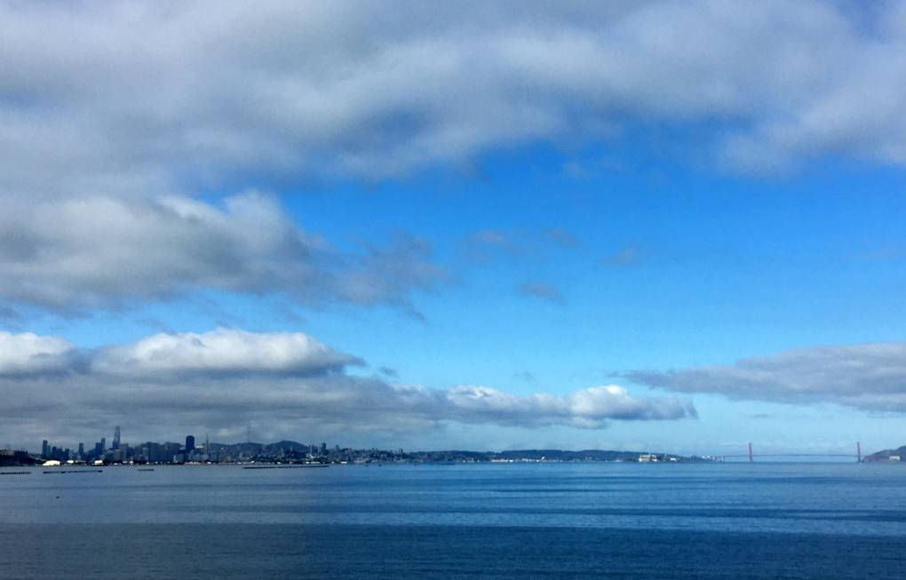 View of San Francisco from Cesar Chavez Park in Berkeley.