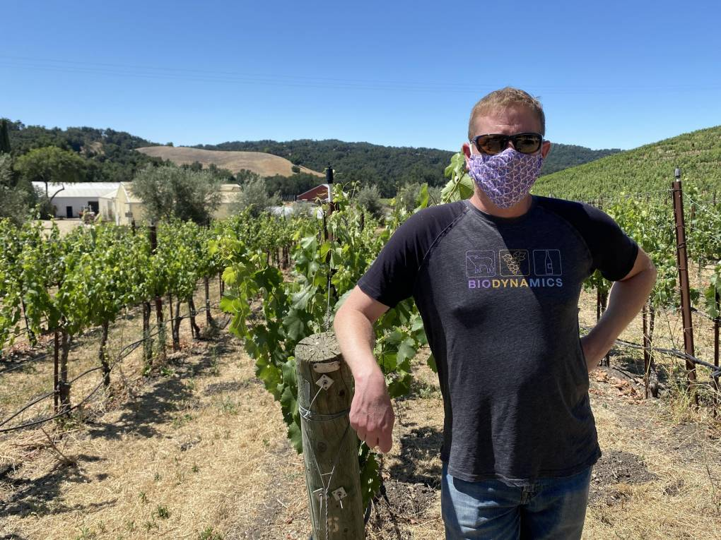 Wine Industry Limps Along With Tasting Rooms Closed