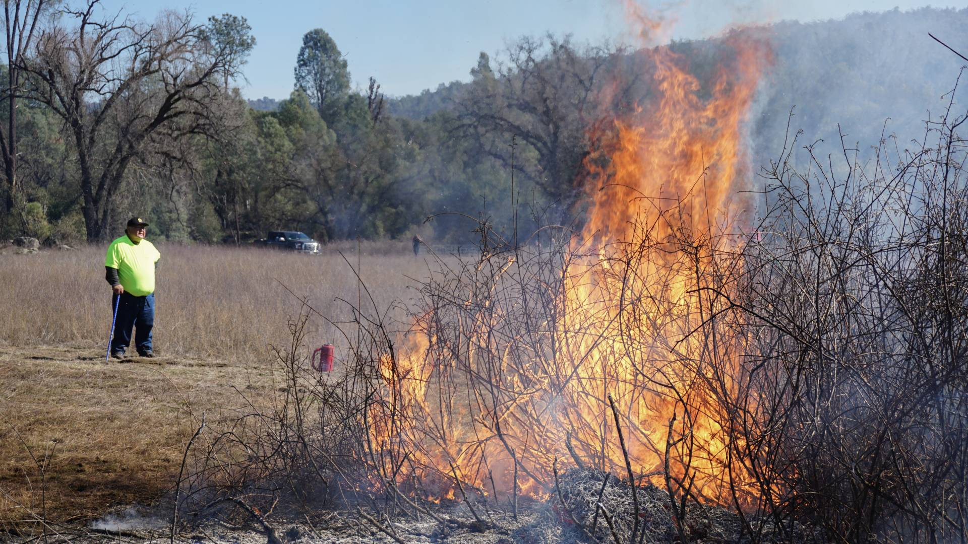Goode looks on as sourberry bushes burn. After the bushes are burned in the winter, they sprout again in the spring. Lauren Sommer/NPR