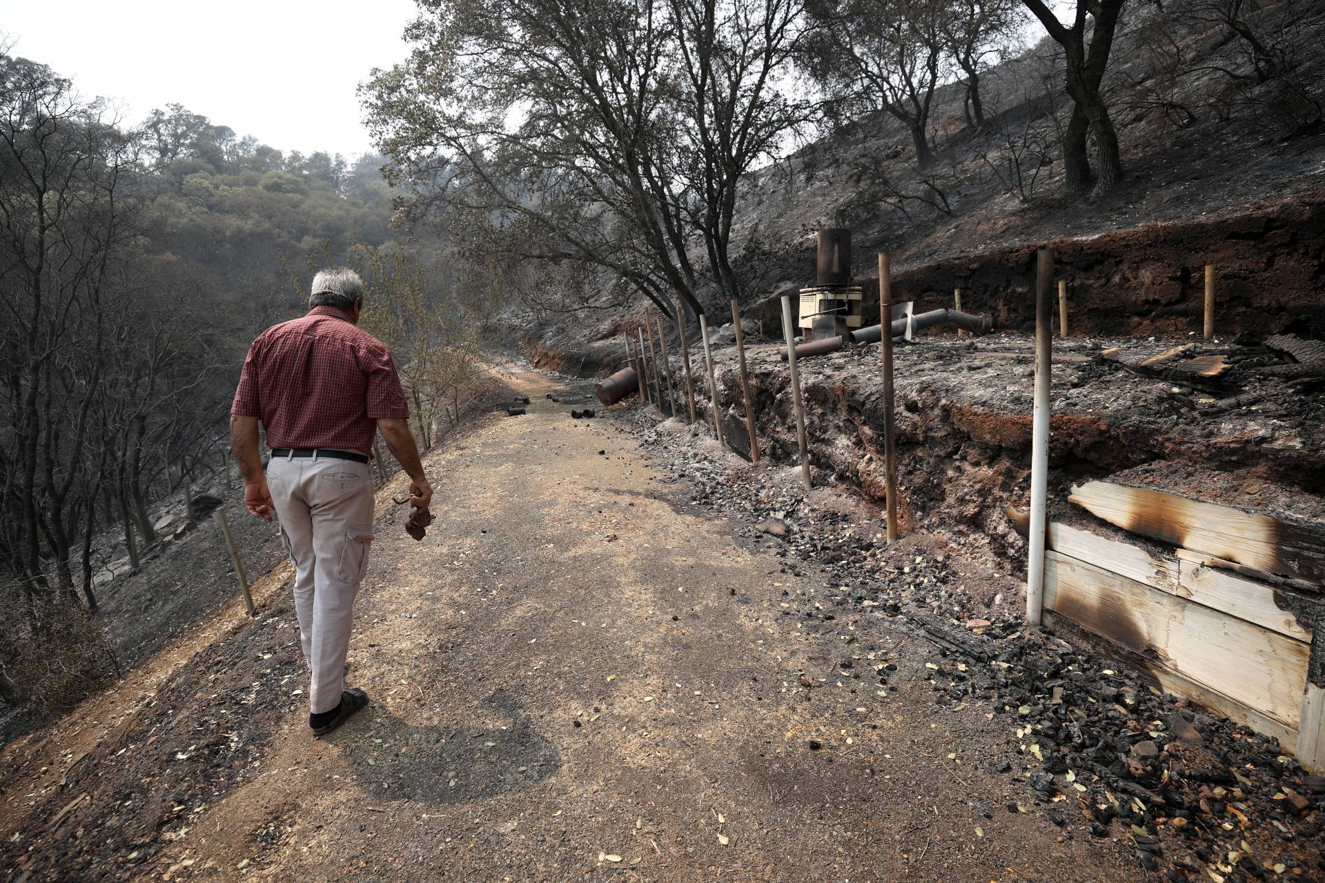 Sid Torun, owner of M.S. Torun Family Vineyards, walks through a portion of his property that was burned by the LNU Lightning Complex fire on August 24, 2020 in Vacaville, California.  Justin Sullivan/Getty Images
