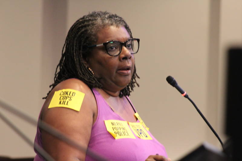 Vallejo resident Lisa Davis voices her opposition to a new police contract at a City Council meeting on Sept. 24, 2019.