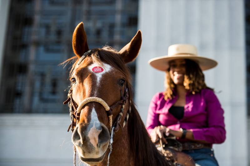 Brianna Noble's horse, Dapper Dan, wears her 'I Voted' sticker after she dropped off her mail-in ballot at the Alameda County Courthouse during a Ride Out to Vote event on Oct. 29, 2020.