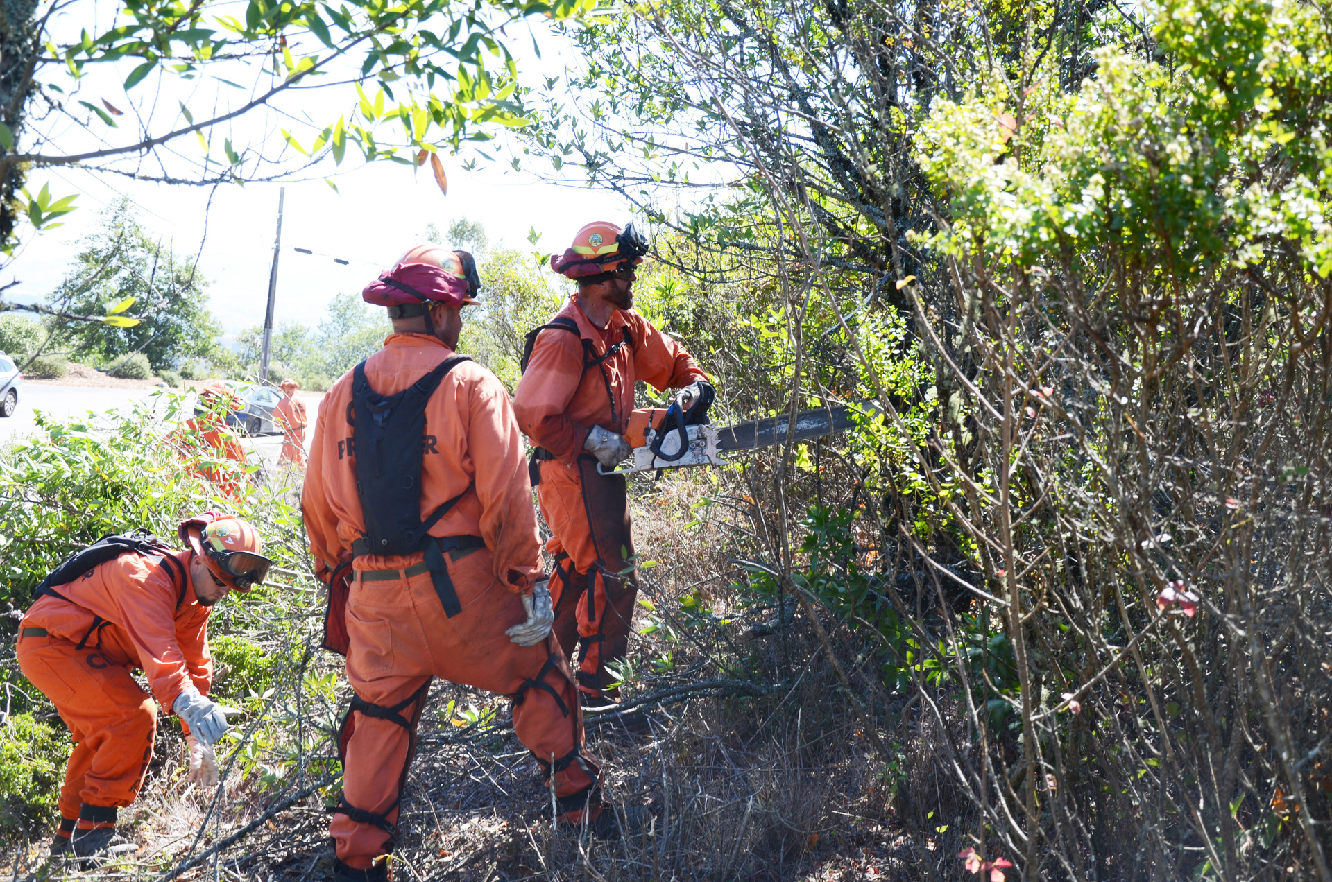 Inmate firefighters clear brush from a roadside in the Berkeley Hills near Tilden Regional Park on Tuesday, Sept. 26, 2017. Fire officials say fuel reduction projects like this are critical to preventing major wildfires.