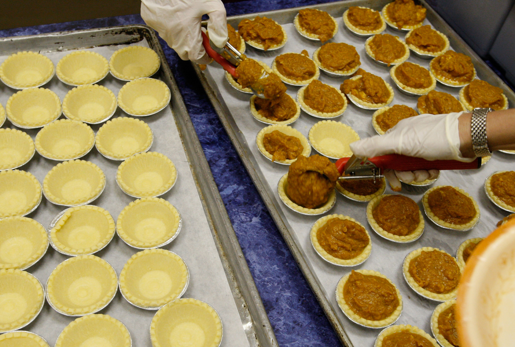 Gloved hands prepare miniature pumpkin pies laid out on a sheet