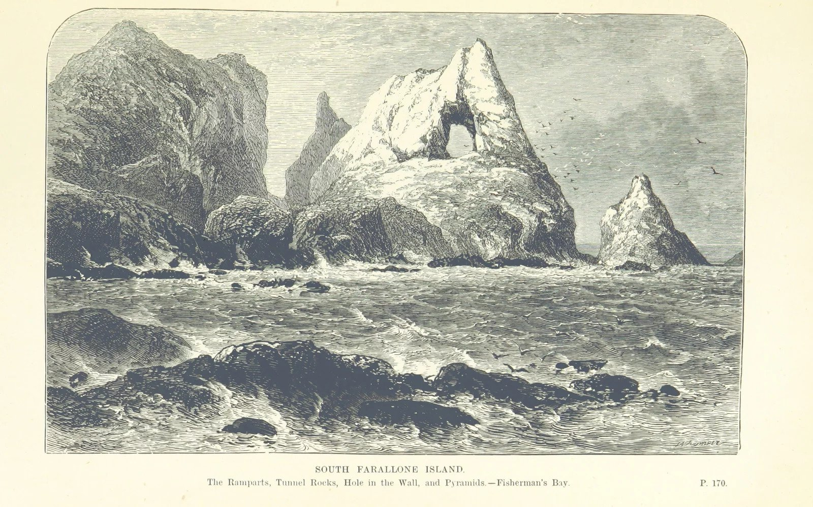Etching of The South Farallon Island
