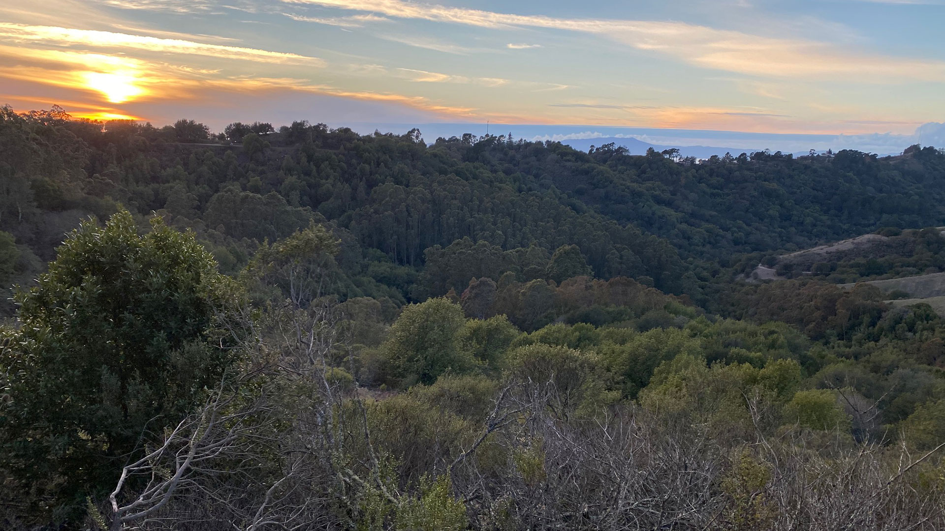 View of the sun setting over the bay from Sibley's hilltops.