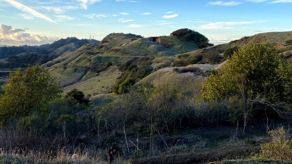 View from the hiking trails at Sibley Volcanic Regional Preserve.
