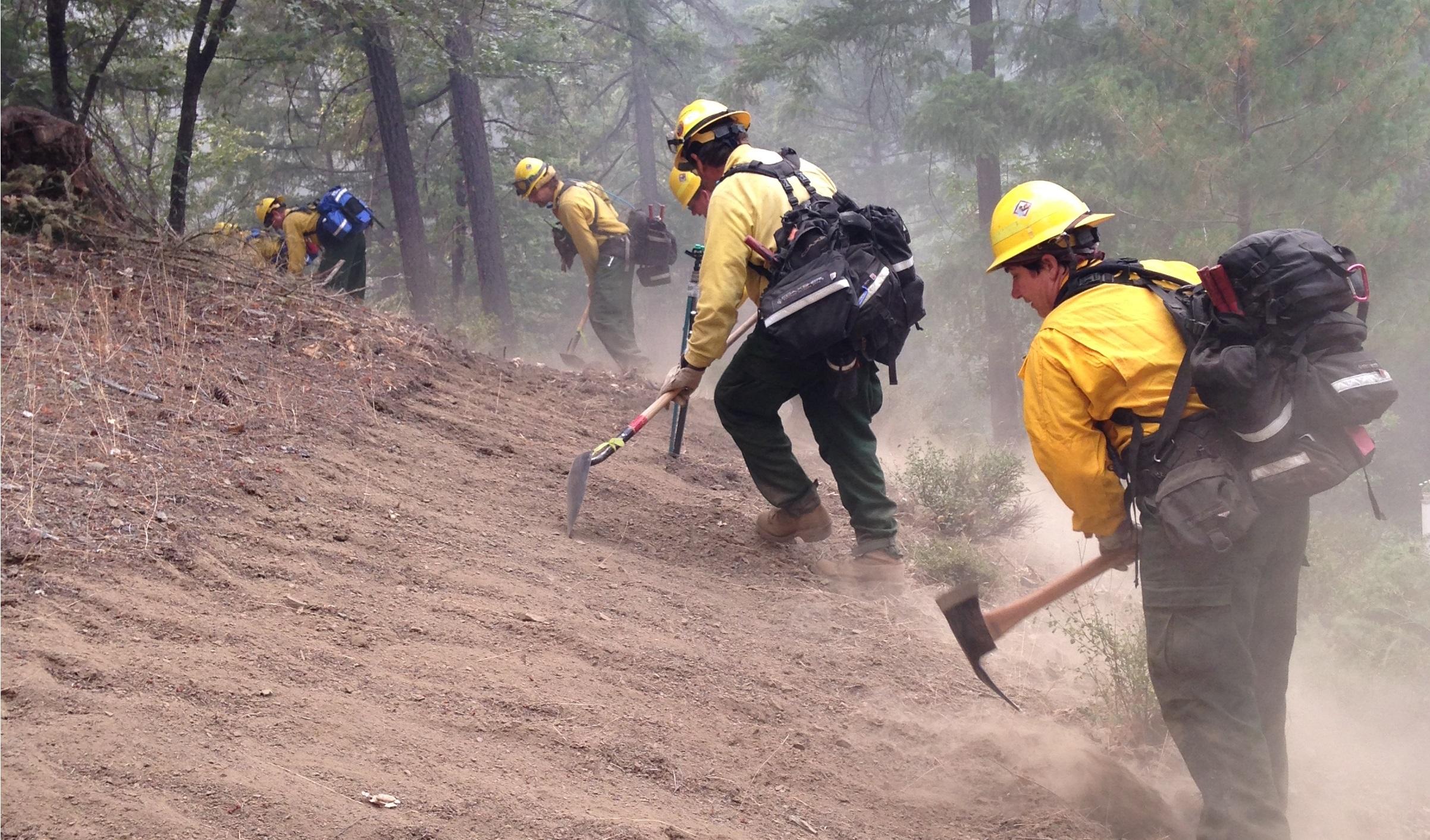 Un grupo de bomberos trabaja en el bosque.