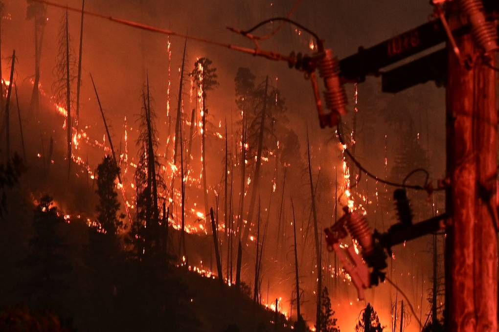 Dozens of trees and a power line burn as flames cover a forest. The sky is black with smoke and embers fly through the air.