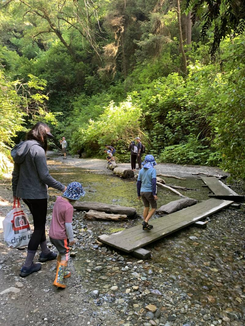 Adults and kids walk across wet boards above a low creek amid lush green hills.