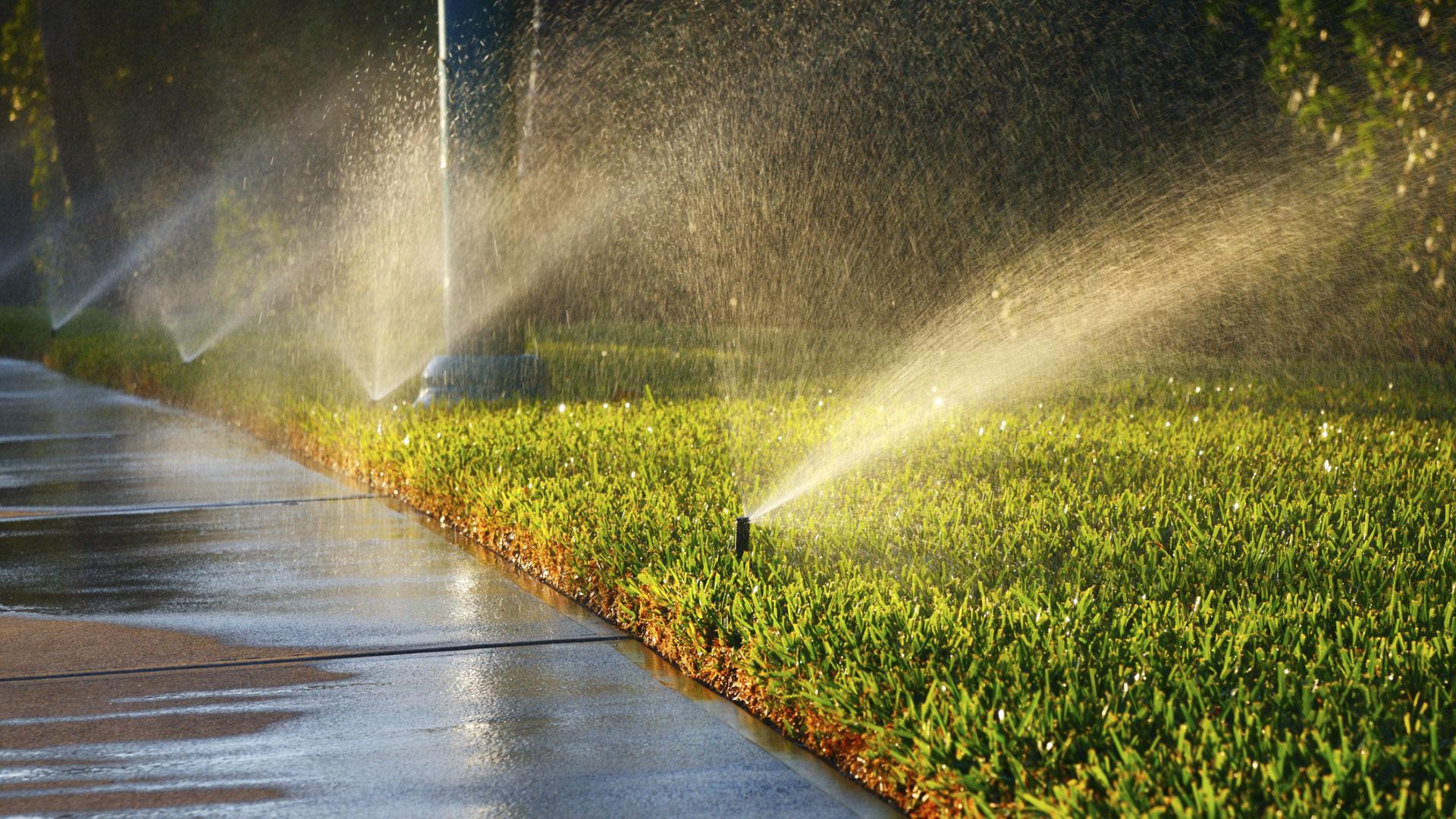 Row of sprinklers watering a lawn