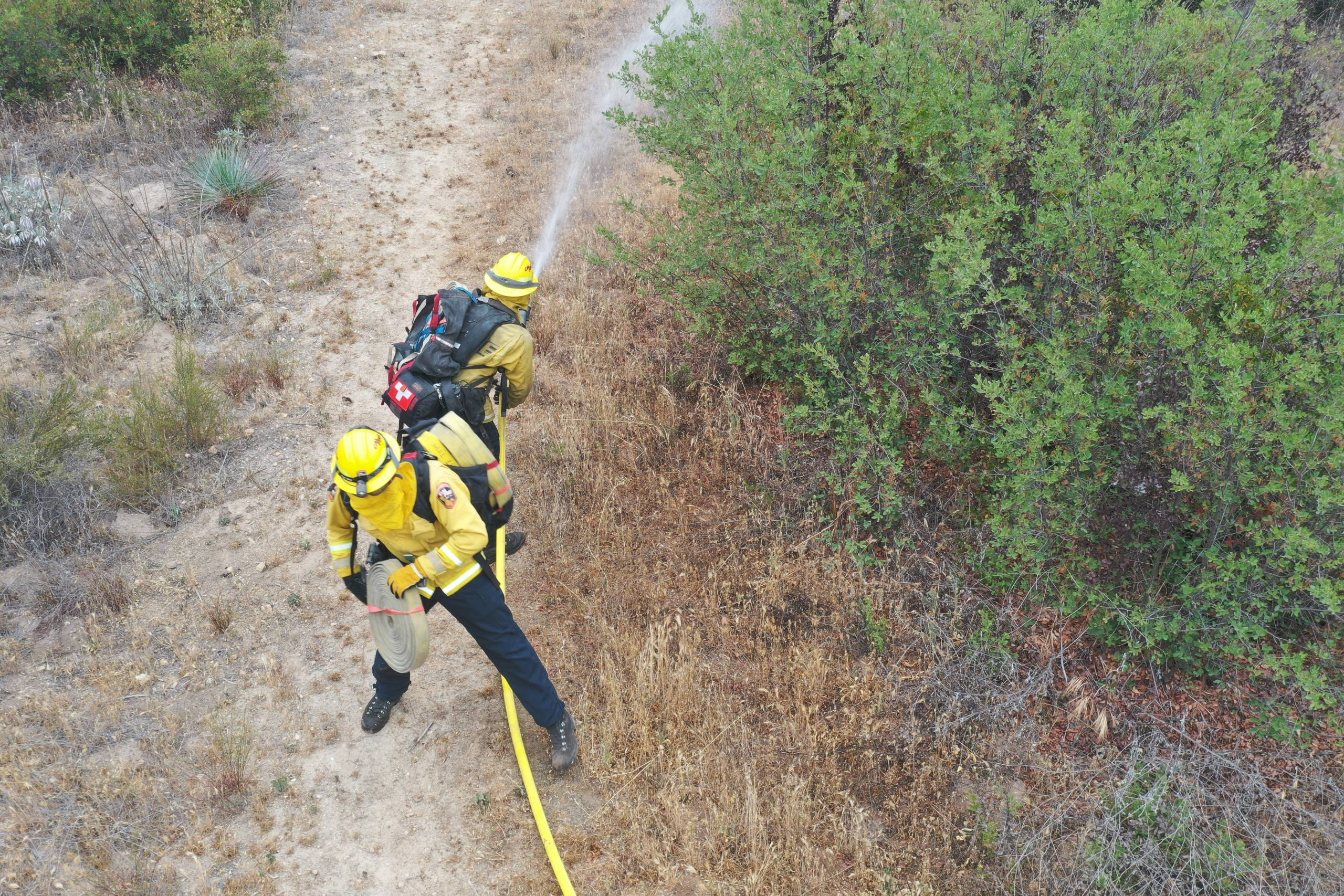 Two firefighters seem to be pulling a long hose through the forest.