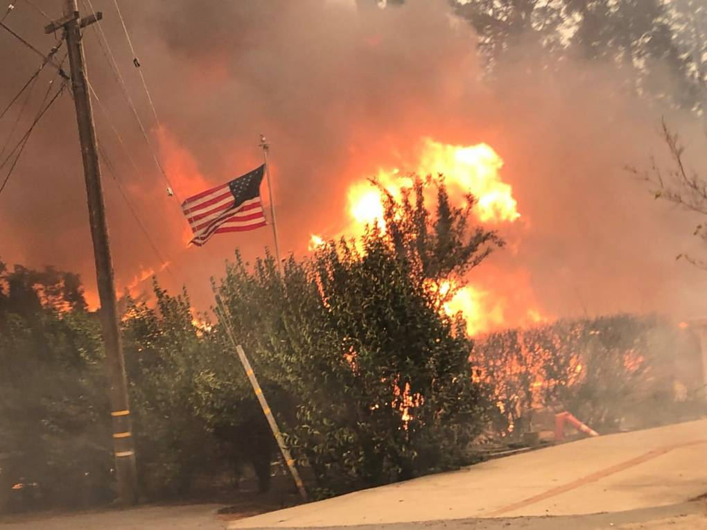 A forest burns in a fire, with particularly bright flames from the top of one falling tree. An American flag flies, not yet touched by the flames.