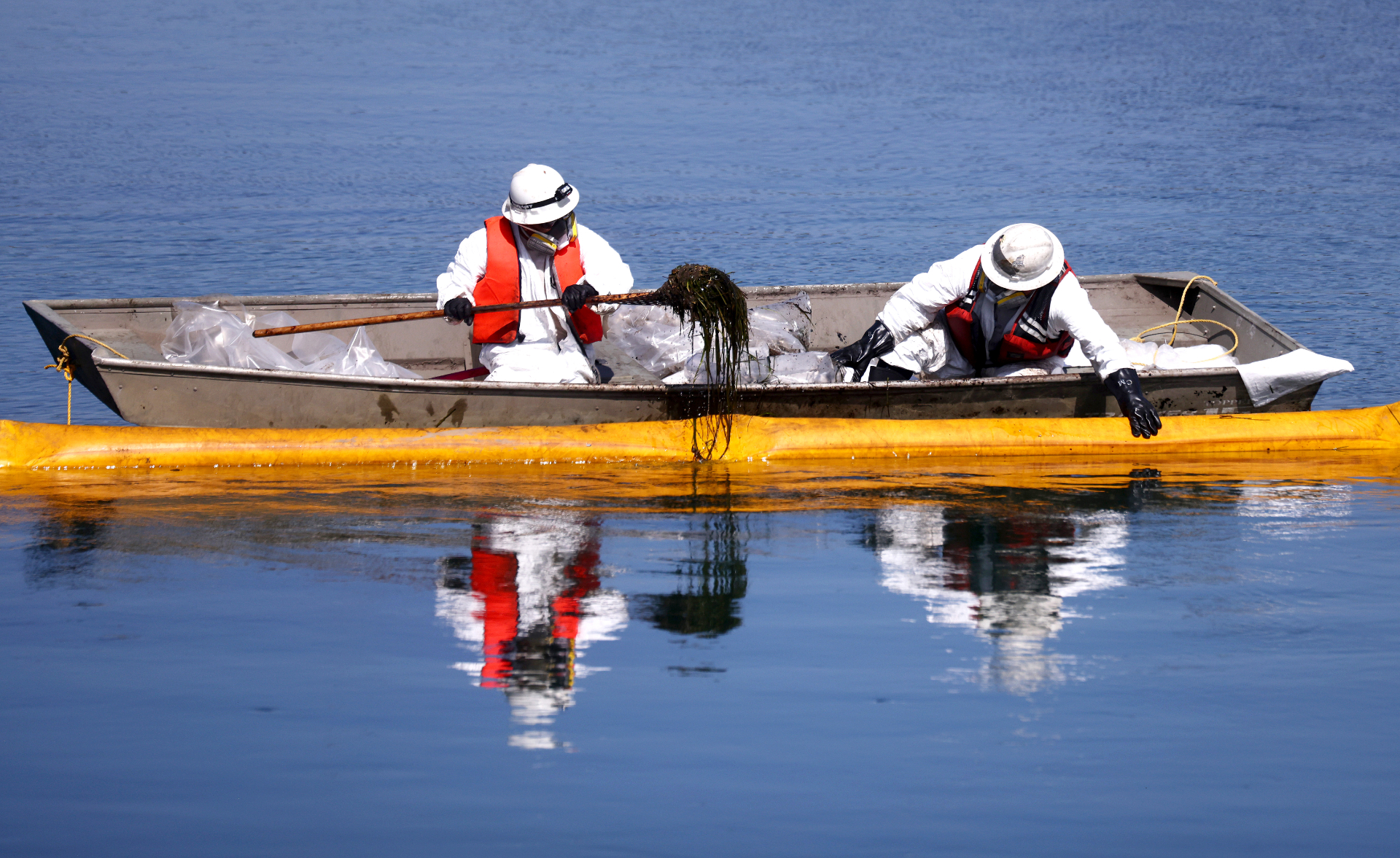 Two people dressed in white hazmat suits and life vests sit in a boat, one wielding a long tool and picking up oil-covered seaweed from the water.