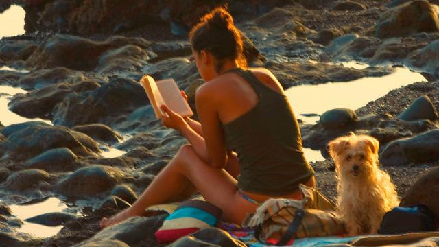 Beach Reads for Brainiacs