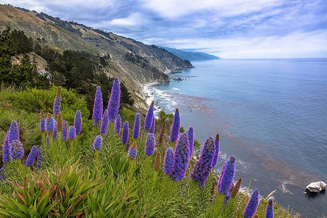 A Big Sur vista