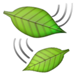 leaf-fluttering-in-wind