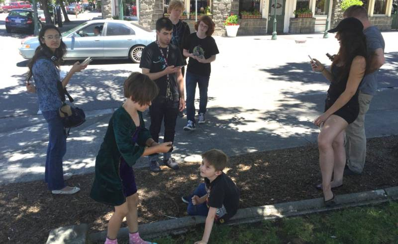 A crowd of people play Pokémon Go.
