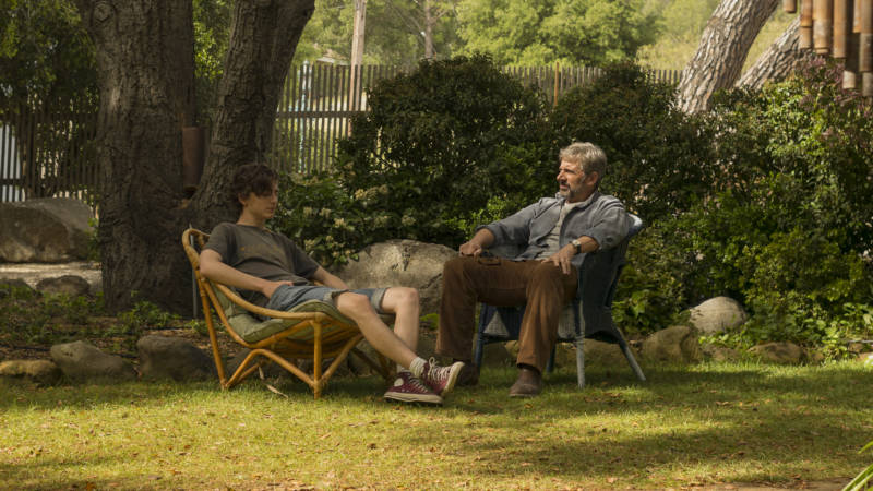 Timothée Chalamet (left) as Nic Sheff and Steve Carell as David Sheff, in a story about the ways addiction narratives don't tend to end neatly—or at all.