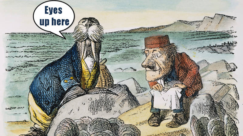 The Walrus-Penis-Wielding Congressman