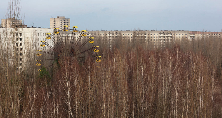 At a fairground within Ukraine's Chernobyl exclusion zone, a birch forest has emerged decades after a nuclear reactor accident forced the abandonment of the area.