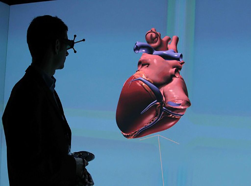 A 3-D simulation of a human heart  Living Heart Project