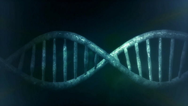 Are you willing to let a company use your DNA for profit if you get a cheaper DNA test out of it? (Pixabay)