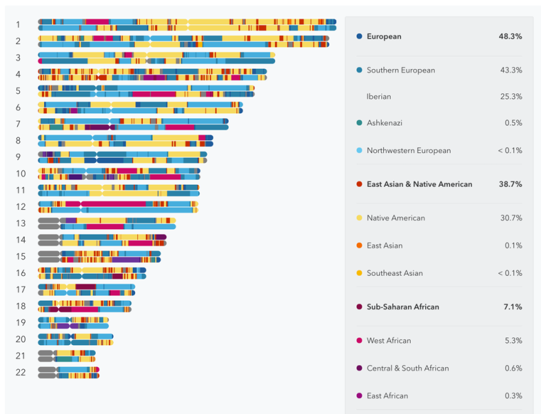 The new test offers colorful reports about your ancestry and family history.